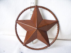TIN-023 SM STAR IN RING 12in dia