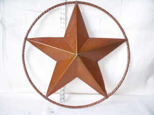 TIN-024 MED STAR IN RING 24in dia
