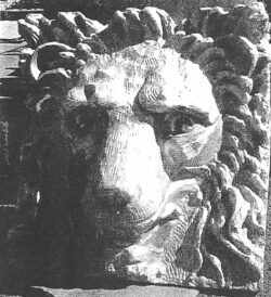 ALS-203 SQUARE LION FACE