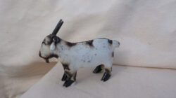 TIN-708 MINI MINI GOAT